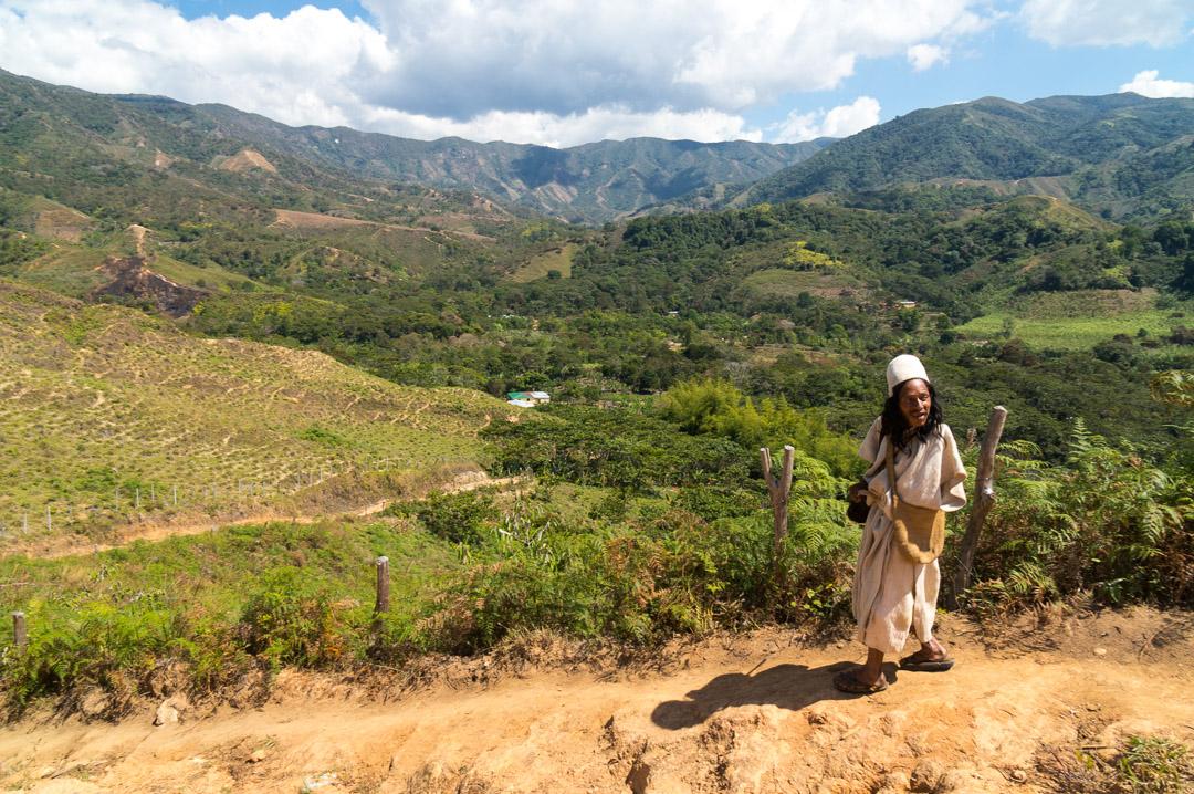 Mamo Zarawin walks near settlement of Yeurua, Arhuaco Indigenous Territory, Sierra Nevada de Santa Marta, Colombia.
