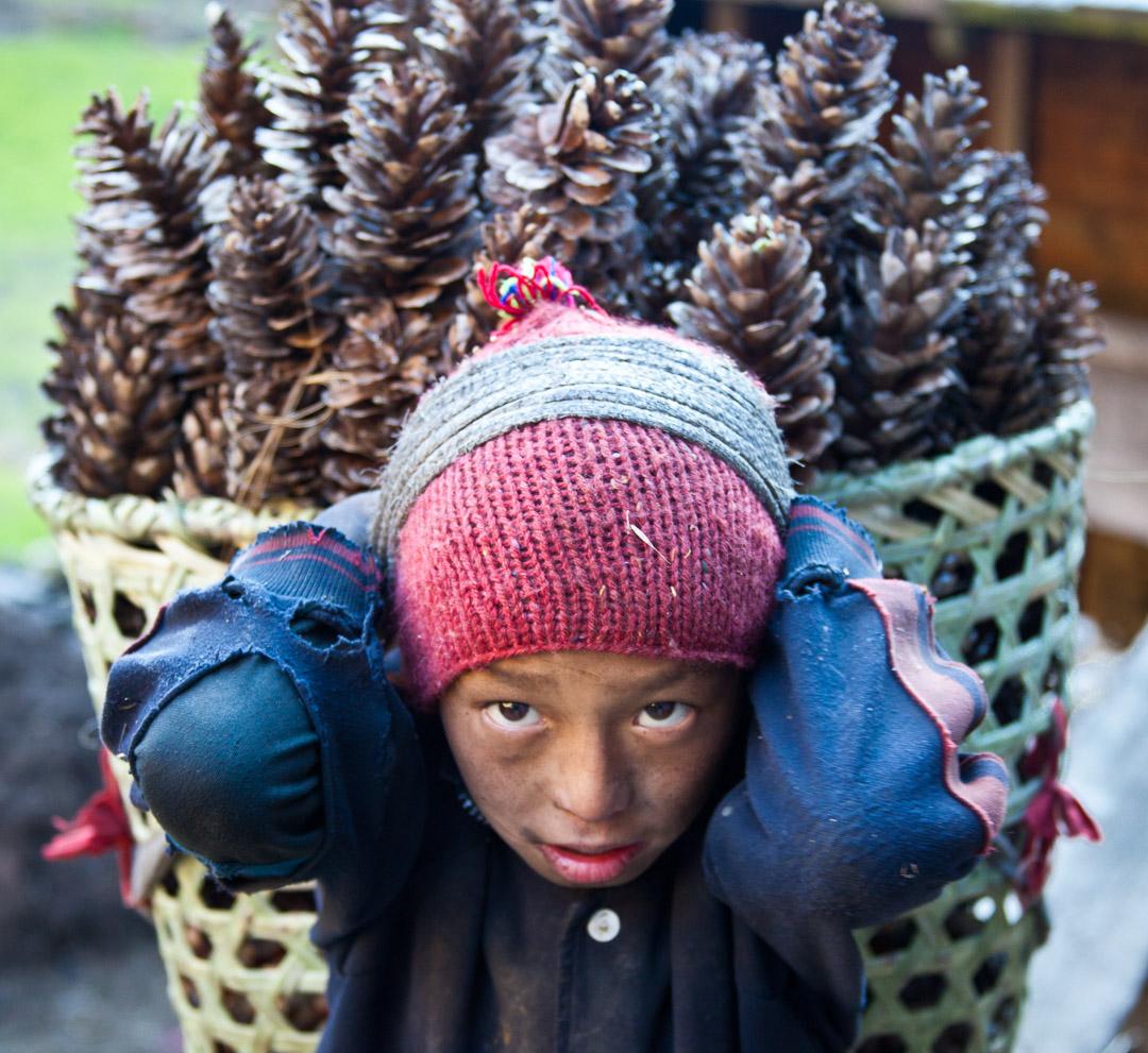Tsum Valley trek, Dec 2010. kid with pine cones, Chumling