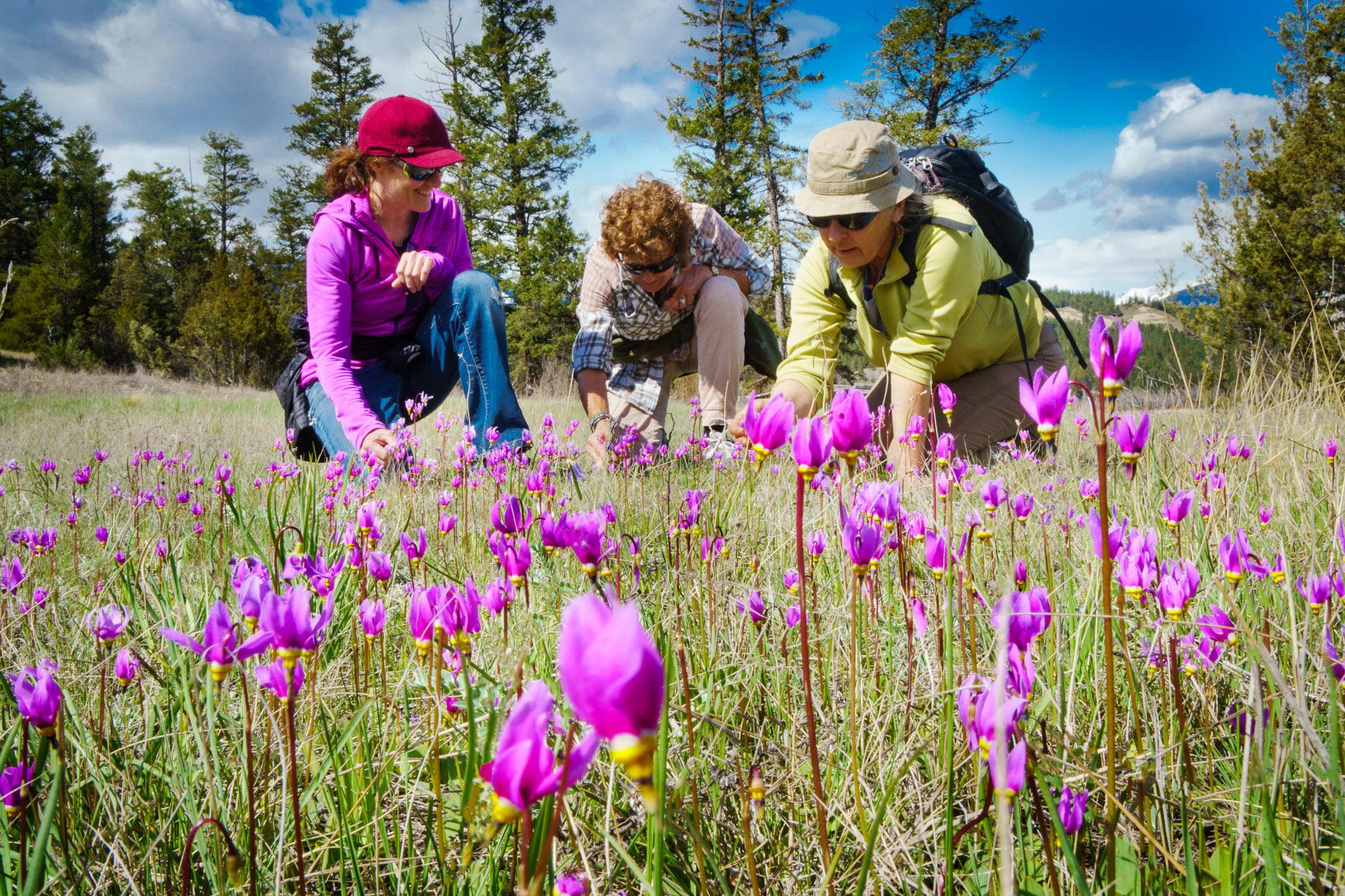 Kirsten and Nancy Knechtel hiking in Wilmer wetlands, with Baiba