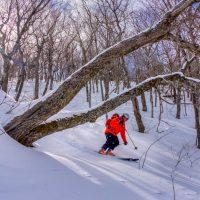 Sandy Millar, Meat Cove mountain, Cape North, Cape Breton Island, Nova Scotia adventure ski shoot for Ski Canada magazine.