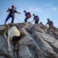 Kain Teens day 1 of climbing camp, Pedley Pass, Rockies, guide Tim McAllister, Snowpatch the dog, Virginia Denchuk, Cameron Hofer, Anika Rievaj, Rockies, B C